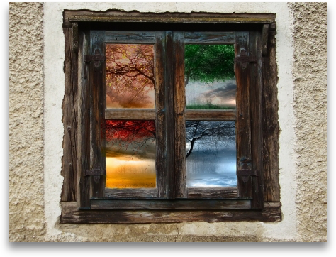 new115984329_s_Seasons_window_